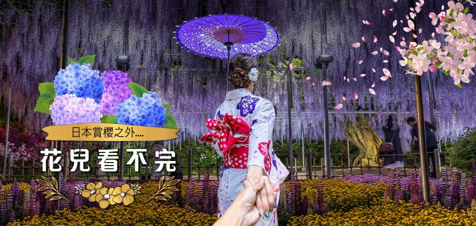 初夏。日本 花兒看不完